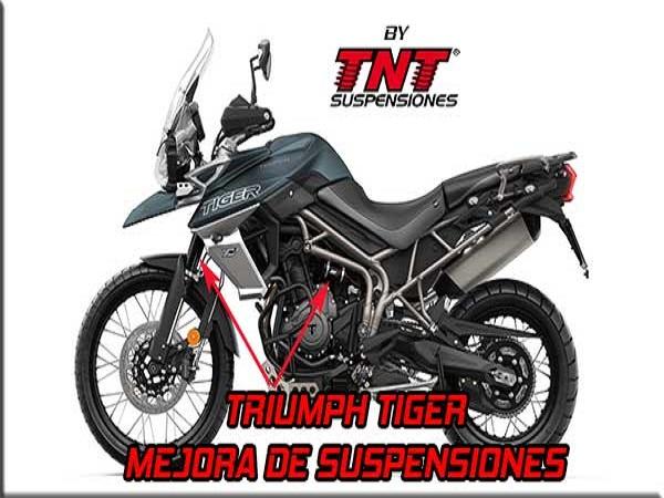 triumph tiger mejorar suspensiones