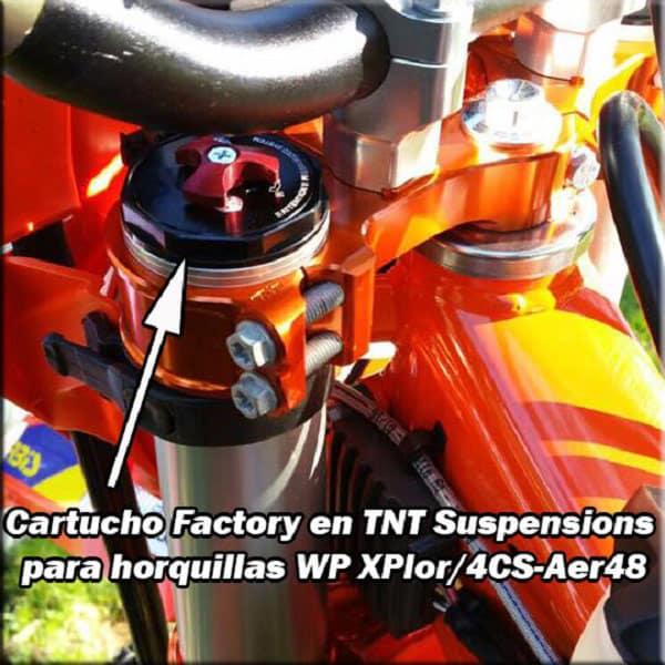 CARTUCHOS PARA XPLOR Y 4CS